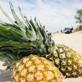 Pineapple Express E-Liquid by Atomic Dog Vapor Review
